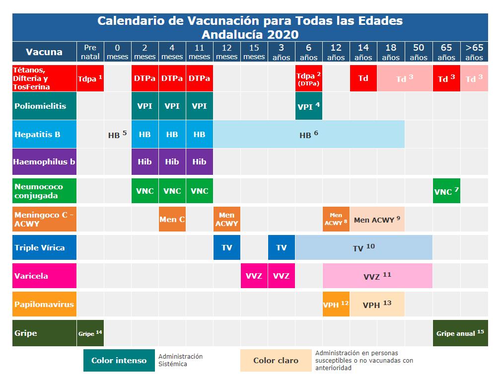Calendario de vacunas 2020 junta de andalucía - CENTRO MEDICO LAS INFANTAS